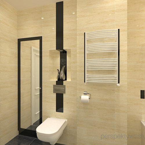 projekt-łazienki-projektowanie-wnętrz-lublin-perspektywa-studio-łazienka-klasyczna-w-kamienicy-wanna-z-parawanem-Bastile-3