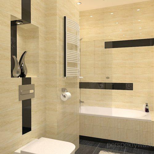 projekt-łazienki-projektowanie-wnętrz-lublin-perspektywa-studio-łazienka-klasyczna-w-kamienicy-wanna-z-parawanem-Bastile-4