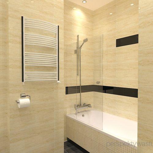 projekt-łazienki-projektowanie-wnętrz-lublin-perspektywa-studio-łazienka-klasyczna-w-kamienicy-wanna-z-parawanem-Bastile-5