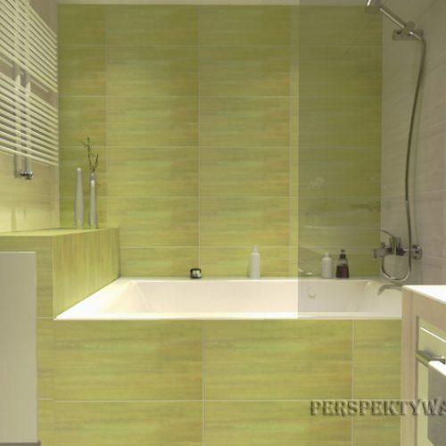 projekt-łazienki-projektowanie-wnętrz-lublin-perspektywa-studio-łazienka-nowoczesna-jasne-zielenie-4m2-wanna-w-zabudowie-z-prysznicem-Cielo-5