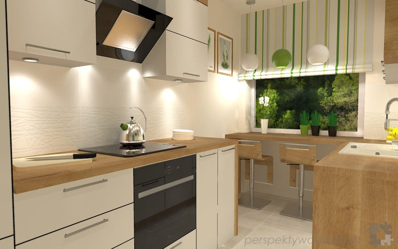 projekt-kuchni-projektowanie-wnętrz-lublin-perspektywa-studio-kuchnia-mała-7m2-z-mijscem-do-jedzenia-tv-w-kuchni-Kwiat-paproci-1