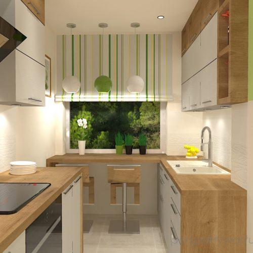projekt-kuchni-projektowanie-wnętrz-lublin-perspektywa-studio-kuchnia-mała-7m2-z-mijscem-do-jedzenia-tv-w-kuchni-Kwiat-paproci-3