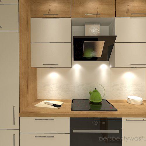projekt-kuchni-projektowanie-wnętrz-lublin-perspektywa-studio-kuchnia-mała-7m2-z-mijscem-do-jedzenia-tv-w-kuchni-Kwiat-paproci-5
