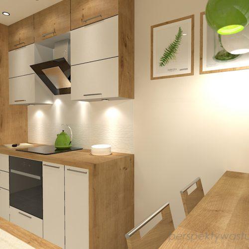 projekt-kuchni-projektowanie-wnętrz-lublin-perspektywa-studio-kuchnia-mała-7m2-z-mijscem-do-jedzenia-tv-w-kuchni-Kwiat-paproci-6