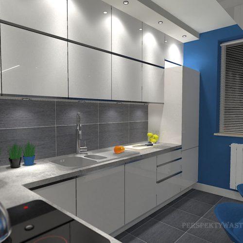 projekt-kuchni-salonu-projektowanie-wnętrz-lublin-perspektywa-studio-kuchnia-minimalistyczna-scandi-białe-fronty-salon-łupek-sarość-błekit-sofy-Meander-12