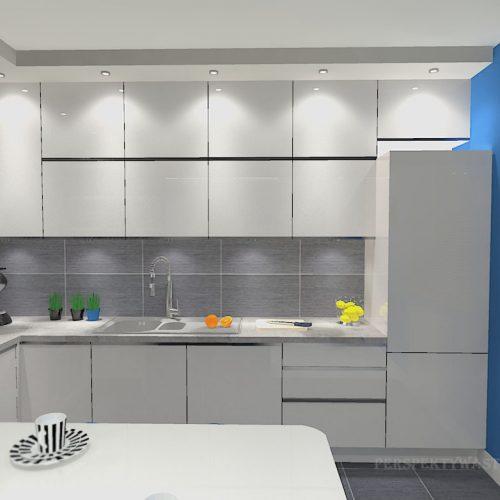 projekt-kuchni-salonu-projektowanie-wnętrz-lublin-perspektywa-studio-kuchnia-minimalistyczna-scandi-białe-fronty-salon-łupek-sarość-błekit-sofy-Meander-4