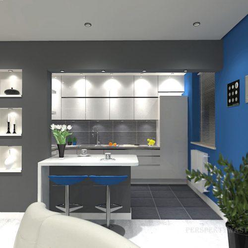 projekt-kuchni-salonu-projektowanie-wnętrz-lublin-perspektywa-studio-kuchnia-minimalistyczna-scandi-białe-fronty-salon-łupek-sarość-błekit-sofy-Meander-5