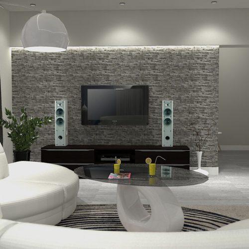 projekt-kuchni-salonu-projektowanie-wnętrz-lublin-perspektywa-studio-kuchnia-minimalistyczna-scandi-białe-fronty-salon-łupek-sarość-błekit-sofy-Meander-8