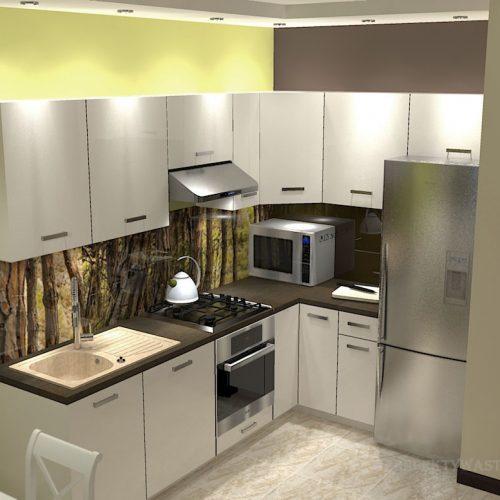 projekt-kuchni-salonu-projektowanie-wnętrz-lublin-perspektywa-studio-kuchnia-nowoczesna-minimalistyczna-nadruk-na-szkle-salon-kawalerka-sypialnia-Robin-Hood-1