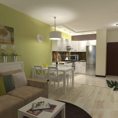 projekt-kuchni-salonu-projektowanie-wnętrz-lublin-perspektywa-studio-kuchnia-nowoczesna-minimalistyczna-nadruk-na-szkle-salon-kawalerka-sypialnia-Robin-Hood-2