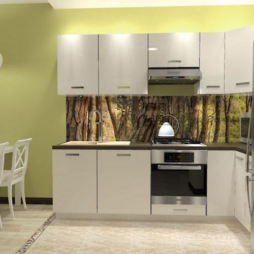 projekt-kuchni-salonu-projektowanie-wnętrz-lublin-perspektywa-studio-kuchnia-nowoczesna-minimalistyczna-nadruk-na-szkle-salon-kawalerka-sypialnia-Robin-Hood-4