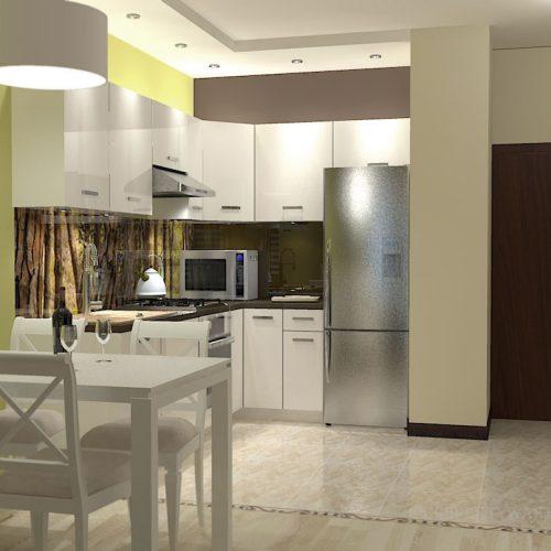 projekt-kuchni-salonu-projektowanie-wnętrz-lublin-perspektywa-studio-kuchnia-nowoczesna-minimalistyczna-nadruk-na-szkle-salon-kawalerka-sypialnia-Robin-Hood-5