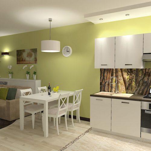 projekt-kuchni-salonu-projektowanie-wnętrz-lublin-perspektywa-studio-kuchnia-nowoczesna-minimalistyczna-nadruk-na-szkle-salon-kawalerka-sypialnia-Robin-Hood-7