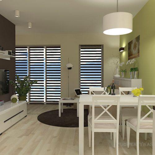 projekt-kuchni-salonu-projektowanie-wnętrz-lublin-perspektywa-studio-kuchnia-nowoczesna-minimalistyczna-nadruk-na-szkle-salon-kawalerka-sypialnia-Robin-Hood-8