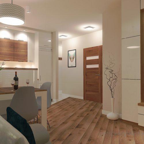 projekt-kuchni-salonu-projektowanie-wnętrz-lublin-perspektywa-studio-kuchnia-styl-nowoczesny-fronty-lakierowane-drewno-półwysep-w-kuchni-mały-salon-Kot-pocztowy-1