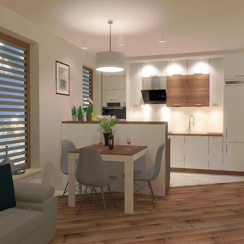 projekt-kuchni-salonu-projektowanie-wnętrz-lublin-perspektywa-studio-kuchnia-styl-nowoczesny-fronty-lakierowane-drewno-półwysep-w-kuchni-mały-salon-Kot-pocztowy-2