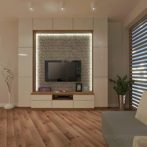 projekt-kuchni-salonu-projektowanie-wnętrz-lublin-perspektywa-studio-kuchnia-styl-nowoczesny-fronty-lakierowane-drewno-półwysep-w-kuchni-mały-salon-Kot-pocztowy-3
