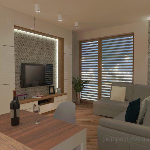 projekt-kuchni-salonu-projektowanie-wnętrz-lublin-perspektywa-studio-kuchnia-styl-nowoczesny-fronty-lakierowane-drewno-półwysep-w-kuchni-mały-salon-Kot-pocztowy-4