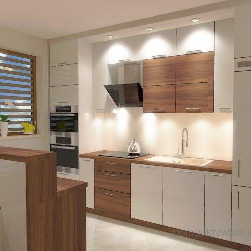projekt-kuchni-salonu-projektowanie-wnętrz-lublin-perspektywa-studio-kuchnia-styl-nowoczesny-fronty-lakierowane-drewno-półwysep-w-kuchni-mały-salon-Kot-pocztowy-5