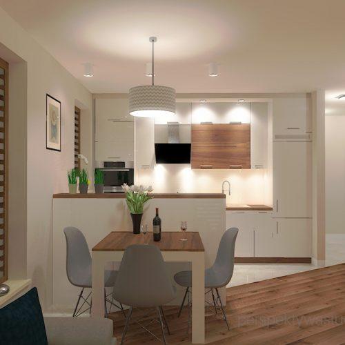 projekt-kuchni-salonu-projektowanie-wnętrz-lublin-perspektywa-studio-kuchnia-styl-nowoczesny-fronty-lakierowane-drewno-półwysep-w-kuchni-mały-salon-Kot-pocztowy-6