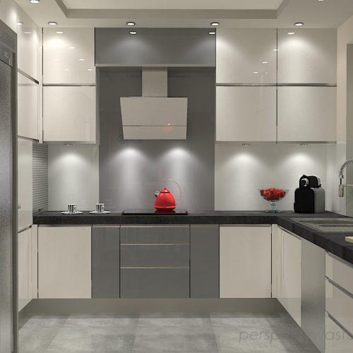 projekt-kuchni-salonu-projektowanie-wnętrz-lublin-perspektywa-studio-kuchnia-szaro-biała-styl-minimalistyczny-lodówka-side-by-side-salon-kominek-narożny-przedpokój-Czerwone-drzwi-do-nikąd-2
