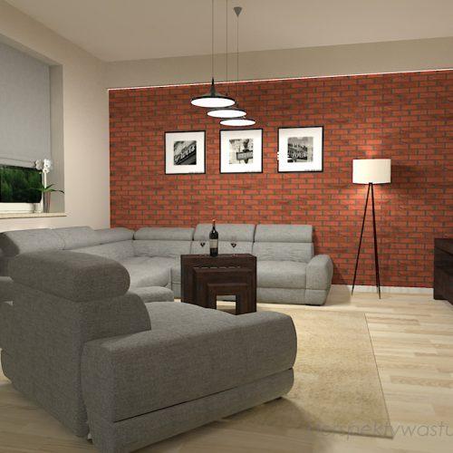 projekt-kuchni-salonu-projektowanie-wnętrz-lublin-perspektywa-studio-kuchnia-szaro-biała-styl-minimalistyczny-lodówka-side-by-side-salon-kominek-narożny-przedpokój-Czerwone-drzwi-do-nikąd-4