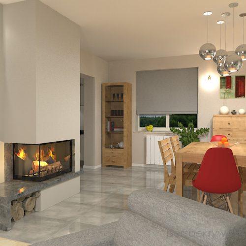 projekt-kuchni-salonu-projektowanie-wnętrz-lublin-perspektywa-studio-kuchnia-szaro-biała-styl-minimalistyczny-lodówka-side-by-side-salon-kominek-narożny-przedpokój-Czerwone-drzwi-do-nikąd-6