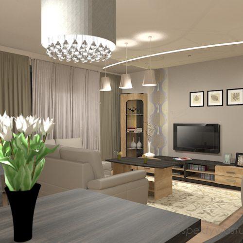 projekt-kuchni-salonu-projektowanie-wnętrz-lublin-perspektywa-studio-kuchnia-z-salonem-styl-klasyczny-sufity-podwieszane-łuki-taśy-led-Pod-kasztanami-2