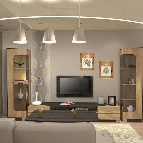 projekt-kuchni-salonu-projektowanie-wnętrz-lublin-perspektywa-studio-kuchnia-z-salonem-styl-klasyczny-sufity-podwieszane-łuki-taśy-led-Pod-kasztanami-6