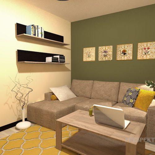 projekt-pokoju-projektowanie-wnętrz-lublin-perspektywa-studio-pokój-dla-studenta-do-wynajęcia-Student-biologii-73