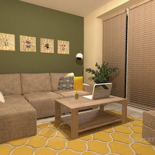 projekt-pokoju-projektowanie-wnętrz-lublin-perspektywa-studio-pokój-dla-studenta-do-wynajęcia-Student-biologii-74