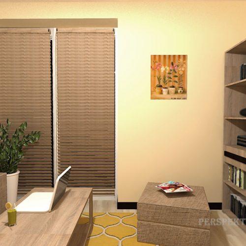 projekt-pokoju-projektowanie-wnętrz-lublin-perspektywa-studio-pokój-dla-studenta-do-wynajęcia-Student-biologii-75