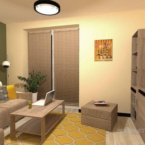 projekt-pokoju-projektowanie-wnętrz-lublin-perspektywa-studio-pokój-dla-studenta-do-wynajęcia-Student-biologii-76