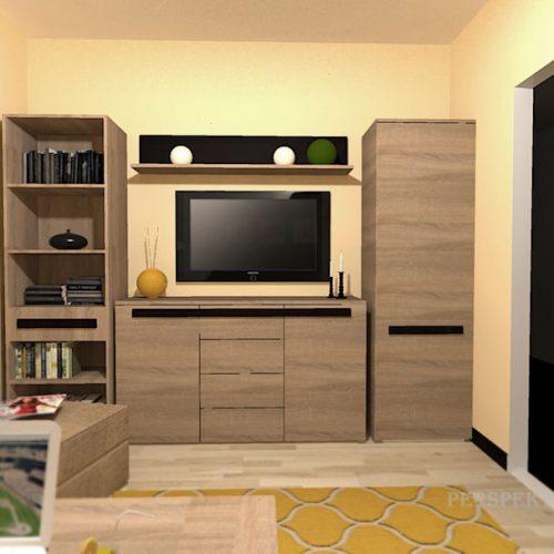 projekt-pokoju-projektowanie-wnętrz-lublin-perspektywa-studio-pokój-dla-studenta-do-wynajęcia-Student-biologii-77
