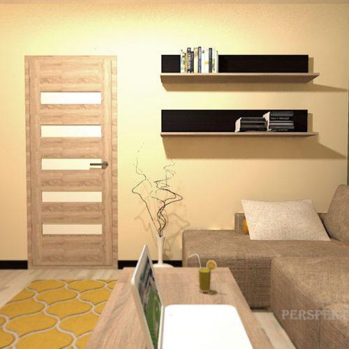 projekt-pokoju-projektowanie-wnętrz-lublin-perspektywa-studio-pokój-dla-studenta-do-wynajęcia-Student-biologii-78