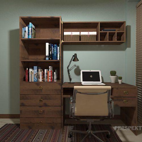 projekt-pokoju-projektowanie-wnętrz-lublin-perspektywa-studio-pokój-dla-studentki-do-wynajęcia-Studentka-geografii-54