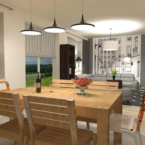 projekt-pokoju-salonu-projektowanie-wnętrz-lublin-perspektywa-studio-salon-minimalistyczny-kominek-narożny-Inne-meble-Nakreślony-1
