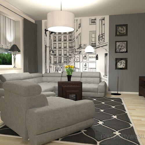 projekt-pokoju-salonu-projektowanie-wnętrz-lublin-perspektywa-studio-salon-minimalistyczny-kominek-narożny-Inne-meble-Nakreślony-2