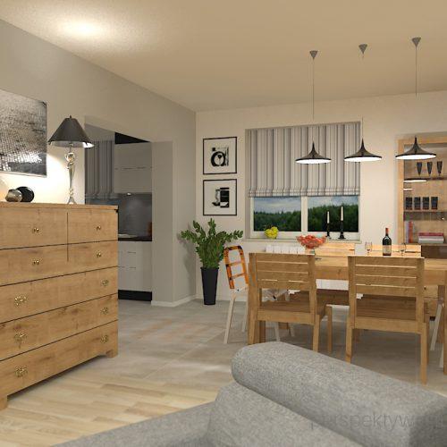 projekt-pokoju-salonu-projektowanie-wnętrz-lublin-perspektywa-studio-salon-minimalistyczny-kominek-narożny-Inne-meble-Nakreślony-4