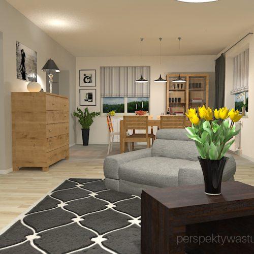 projekt-pokoju-salonu-projektowanie-wnętrz-lublin-perspektywa-studio-salon-minimalistyczny-kominek-narożny-Inne-meble-Nakreślony-5