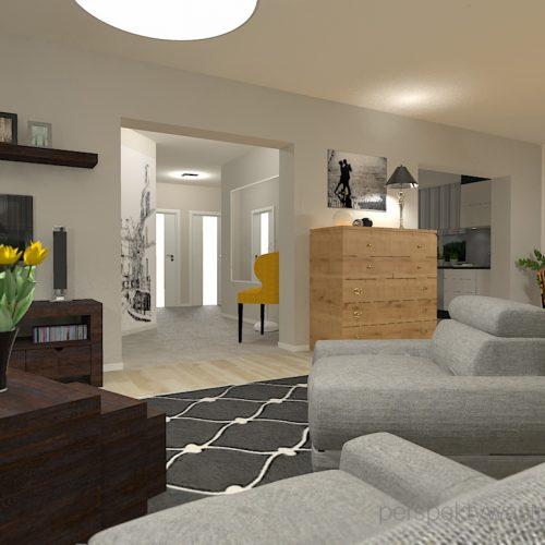 projekt-pokoju-salonu-projektowanie-wnętrz-lublin-perspektywa-studio-salon-minimalistyczny-kominek-narożny-Inne-meble-Nakreślony-6